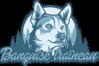 Chiens de Traîneau / Dog Sledding Logo